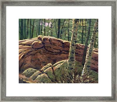 Sunlit Rocks Framed Print by Donald Maier
