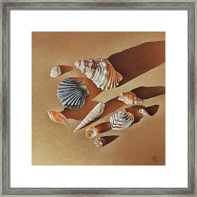 Framed Print featuring the drawing Sunlit Shells by Elena Kolotusha