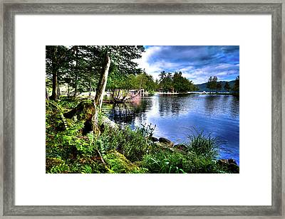Framed Print featuring the photograph Sunlit Shore At Covewood by David Patterson