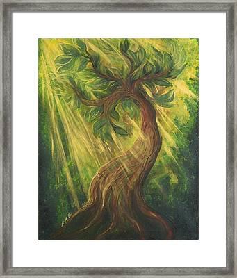 Sunlit Tree Framed Print