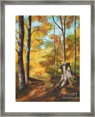 Sunlit Tree Trunk Framed Print