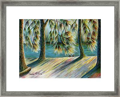Sunlit Trees Framed Print