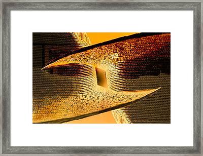 Sunlit Yellow Framed Print