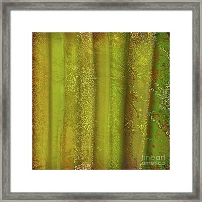 Sunlit Fall Forest Framed Print