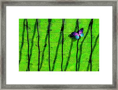 Sunning Framed Print by Paul Wear
