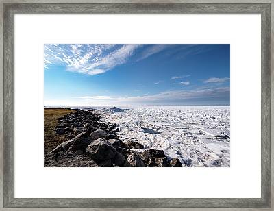 Framed Print featuring the photograph Sunny Afternoon by Onyonet  Photo Studios