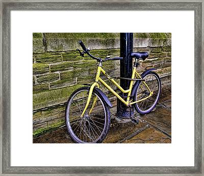 Sunny Cycle Framed Print by JAMART Photography