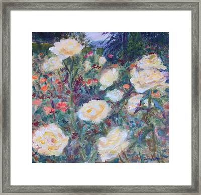 Sunny Day At The Rose Garden Framed Print by Quin Sweetman