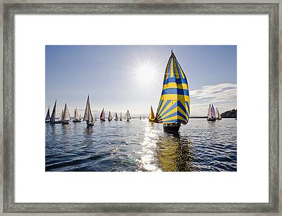 Sunny Day Sailing Framed Print by Tom Dowd