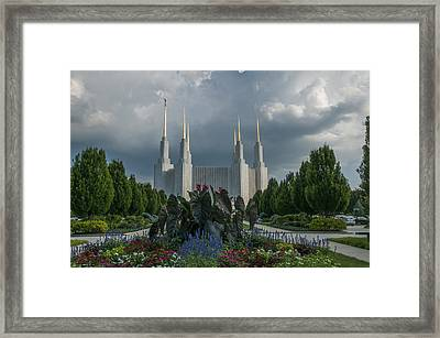 Sunny Day With Clouds Framed Print