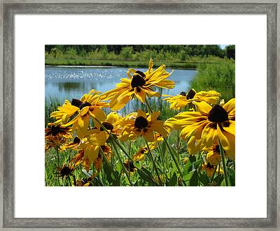 Framed Print featuring the photograph Sunny Days by Christie Minalga