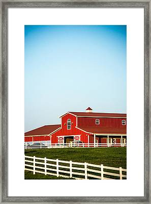 Sunny Days On The Farm Framed Print by Shelby  Young
