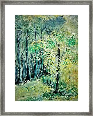 Sunny Forest Framed Print