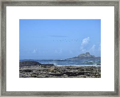 Framed Print featuring the photograph Sunny Morning At Roads End by Peggy Hughes