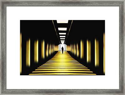Sunny Path Framed Print