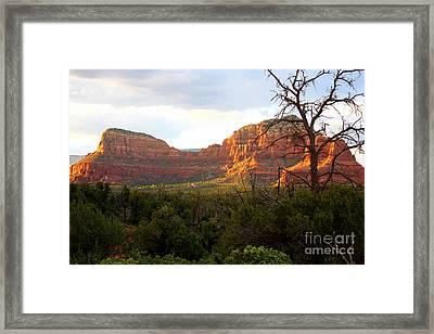 Sunny Sedona Cliffs Framed Print by Carol Groenen