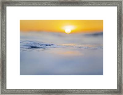 Sunny Side Up Framed Print by Sean Davey