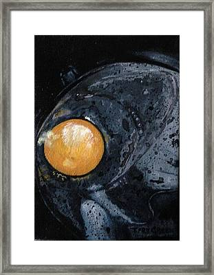 Sunny Side Up Framed Print by T Fry-Green