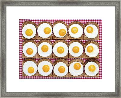 Sunny Side Up Framed Print by Tim Gainey