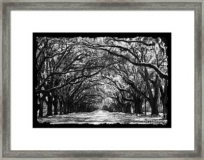 Sunny Southern Day - Black And White With Black Border Framed Print
