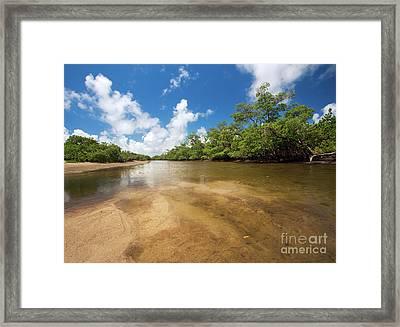 Sunny Summer Day At Whiskey Creek Framed Print