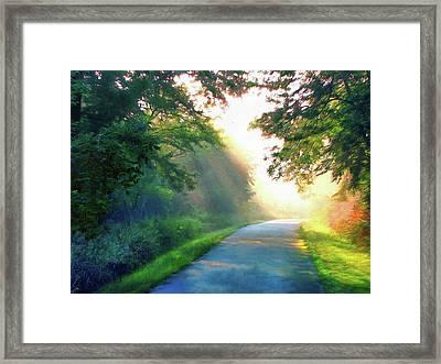 Sunny Trail Framed Print by Cedric Hampton
