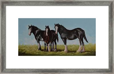Sunny Trio Framed Print
