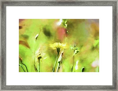 Sunny Yellow Flower Framed Print by Bonnie Bruno