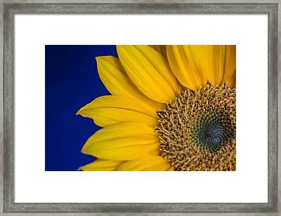 Framed Print featuring the photograph Sunnyside by Julie Andel