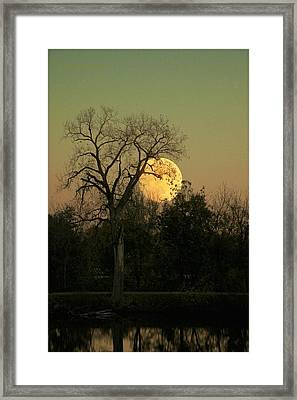 Framed Print featuring the photograph November Supermoon  by Chris Berry