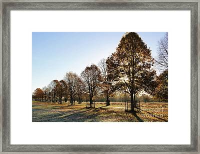 Sunrise And Long Shadows Framed Print