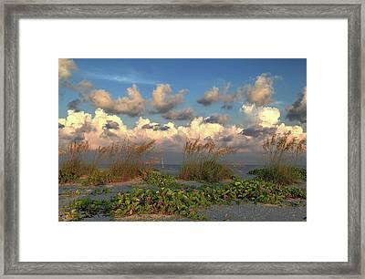 Sunrise And Sea Oats Framed Print