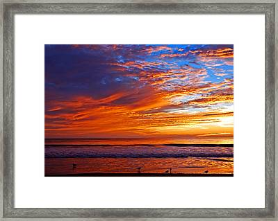 Sunrise And Seagulls Framed Print