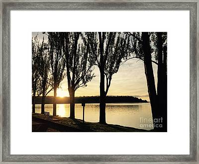Sunrise And Silhouettes  Framed Print