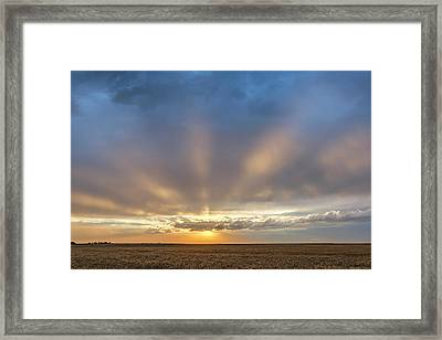 Sunrise And Wheat 03 Framed Print