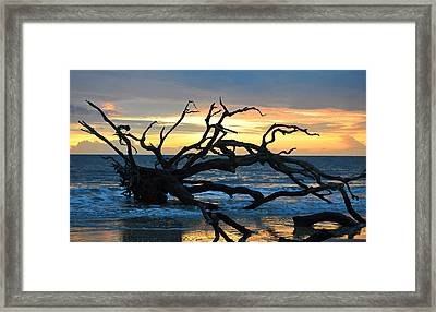Sunrise At Driftwood Beach 1.1 Framed Print by Bruce Gourley