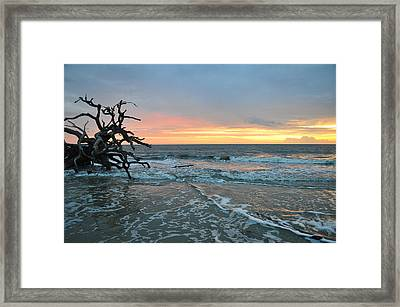 Sunrise At Driftwood Beach 1.3 Framed Print by Bruce Gourley