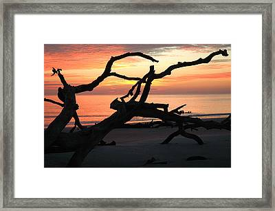 Sunrise At Driftwood Beach 3.1 Framed Print by Bruce Gourley