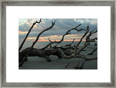 Sunrise At Driftwood Beach 4.1 Framed Print by Bruce Gourley