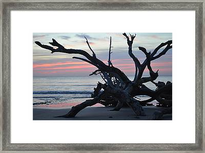 Sunrise At Driftwood Beach 5.1 Framed Print by Bruce Gourley
