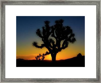 Sunrise At Joshua Framed Print