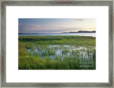 Framed Print featuring the photograph Sunrise At Sandbar  by Susan Cole Kelly