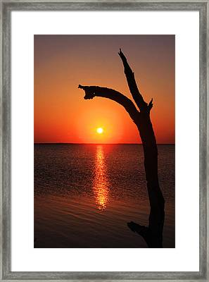 Sunrise At The Cape Framed Print by Marcus Adkins