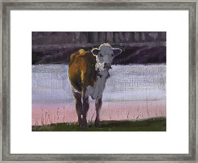 Sunrise At The Pond Framed Print by John Reynolds