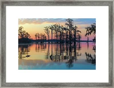 Framed Print featuring the photograph Sunrise, Bald Cypress Of Nc  by Cindy Lark Hartman