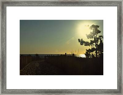 Sunrise Bask Framed Print by JAMART Photography