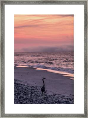 Framed Print featuring the photograph Sunrise Beach And Bird by John McGraw