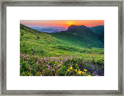 Sunrise Behind Goat Wall Framed Print by Evgeni Dinev