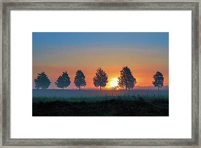 Framed Print featuring the photograph Sunrise Behind The Cedars by Lori Coleman