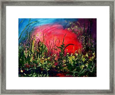 Sunrise Blooming Framed Print by Ellen Seymour